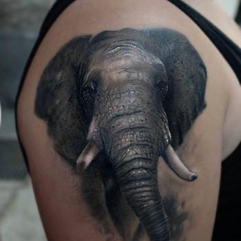 Maui Meherzi - Opus Magnum Tattoo Studio Wien - Elefant Tattoo