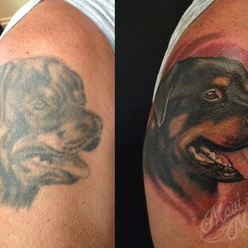Maui Meherzi - Opus Magnum Tattoo Studio Wien - Dog Portrait Tattoo