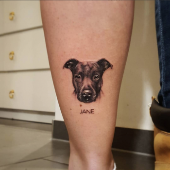 small dog portrait leg kleines hunde portrait jane funny fun lustig swagy borring hallo tattoo minimalismus