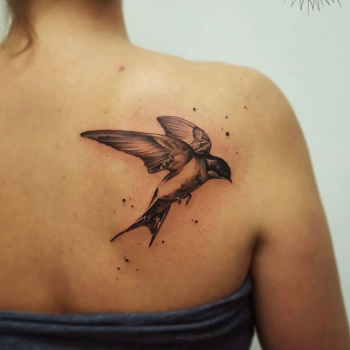 bird tattoo mit watercolor wasserfarben und vogel aquarell inked ink tattoomagazine free fani meherzi