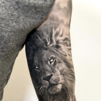 Maui Meherzi - Opus Magnum Tattoo Studio Wien - Photorealistic Lion