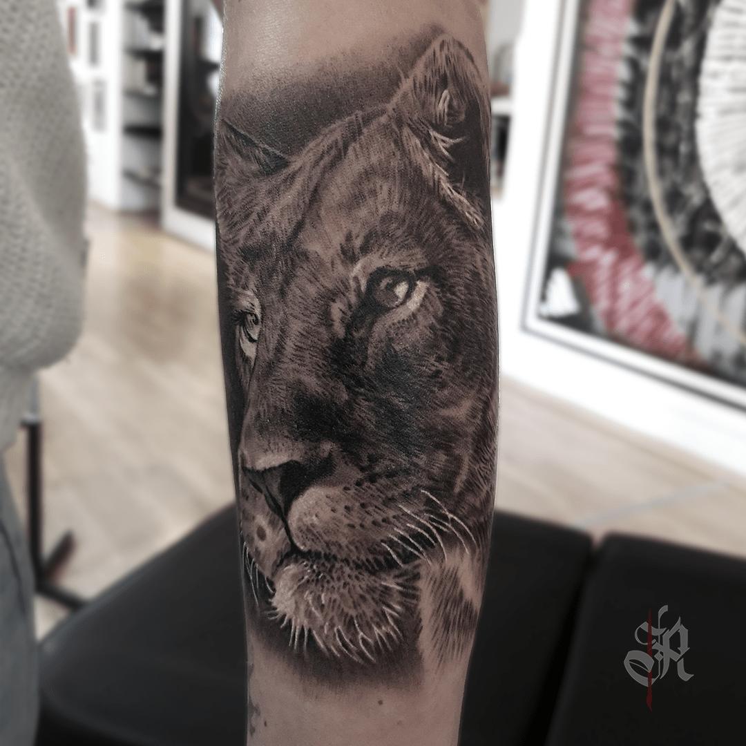 Robi Vienna Tattoo Realistic  Opusmagnum Lion
